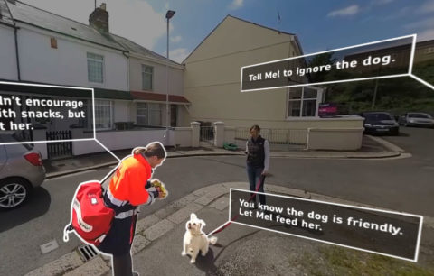 Sponge Vr Dog Safety Featured