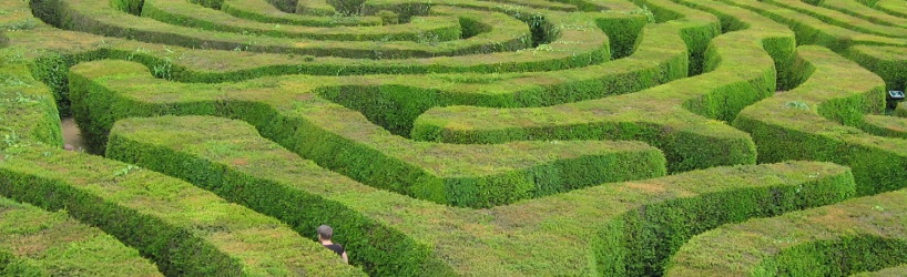 A bad user interface can seem like a maze to a learner trying to navigate your course